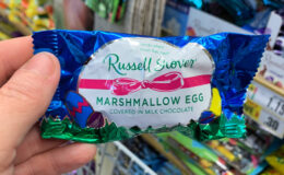 Russell Stover Easter Candy Singles, $0.50 at Rite Aid!