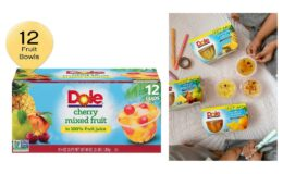 Nice Price on DOLE FRUIT BOWLS, Cherry Mixed Fruit in 100% Fruit Juice, 4 Ounce (12 Count) {Amazon}