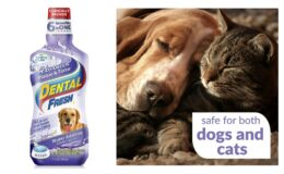 80% Off Dental Fresh Water Additive for Pets {Amazon}