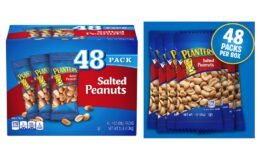Great Snack! Planters Salted Peanuts (1oz Bags, Pack of 48)