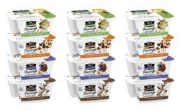 $0.55 MoneyMaker on So Delicious CoconutMilk Yogurt at Target! {Ibotta Rebate}