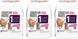 Creative Roots  Coconut Water 4pks Just $0.99 at ShopRite!{Ibotta Rebate}