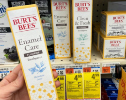 Burt's Bees Adult Toothpaste Only $0.99 at CVS! {Reg. $6.99}