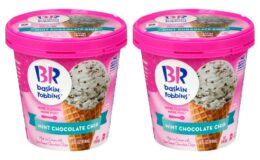Baskin Robbins Ice Cream Just $1.00 at ShopRite!