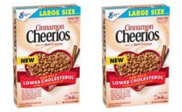 General Mills Cinnamon Cheerios Just $0.99 at ShopRite!
