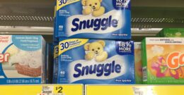 New $5/$25 Dollar General Coupon - Snuggle Fabric Softener Sheets for Just $0.16 + More! {10/31 Only}