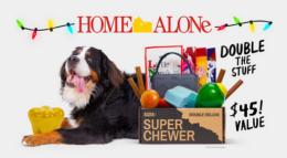 $5.00 for your First Super Chewer Box for your Dog | Black Friday Price