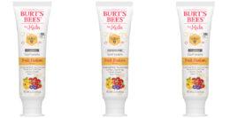 FREE Burts Bees Kids Toothpaste at Stop & Shop {Rebate}