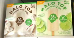 Halo Top Fruit Bars as low as $2.50 at Stop & Shop {Rebate}