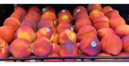 Tree Ripe Peaches Only $0.99 per pound at ShopRite! | Just Use Your Phone