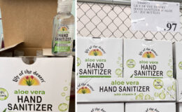 Costco:  Hot Deal on Lily of the Desert Hand Sanitizer - $0.04 per 2 oz bottle!